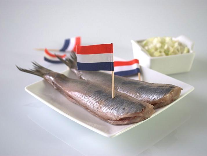 hollandse-haring